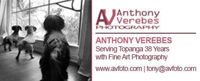 Tony Verebes – Horizontal Revolving Ad